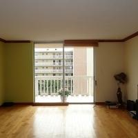 1br in Hallandale